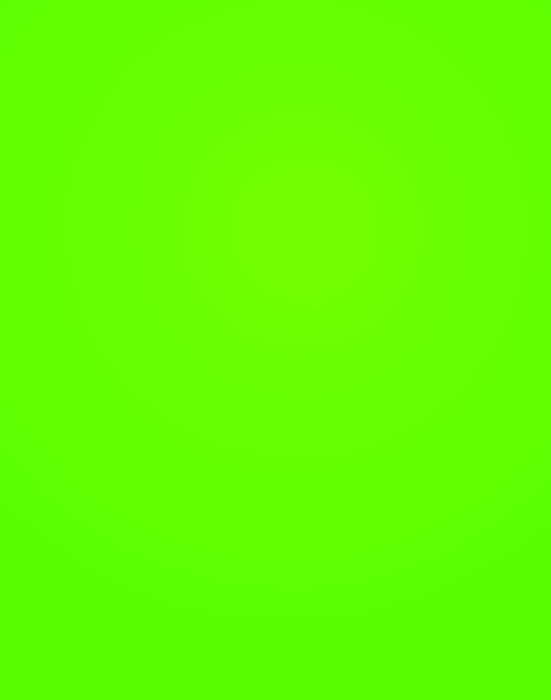 Poster Board Fluorescent Neon Green 51x64cm|Royal Brites Display Board